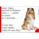 """Colley Assis, plaque humour """"parcourt distance Niche - Portail"""" 24 cm 3SEC"""