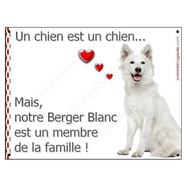 """Berger Blanc Assis, Plaque """"un chien est membre de la famille"""" pancarte, affiche panneau photo idée cadeau cadre"""