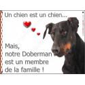 """Doberman, plaque """"Membre de la Famille"""" 2 Tailles LOV A"""