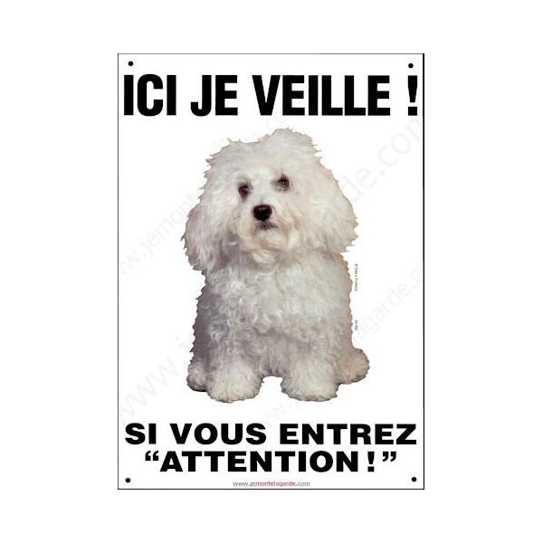 Bichon Bolonais, Pancarte Portail Verticale, attention au chien, panneau plaque affiche risques et périls bolognais