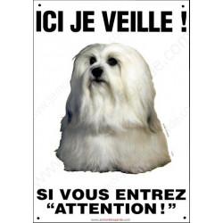 Bichon Havanais, Pancarte Portail Verticale, attention au chien, panneau plaque affiche risques et périls photo