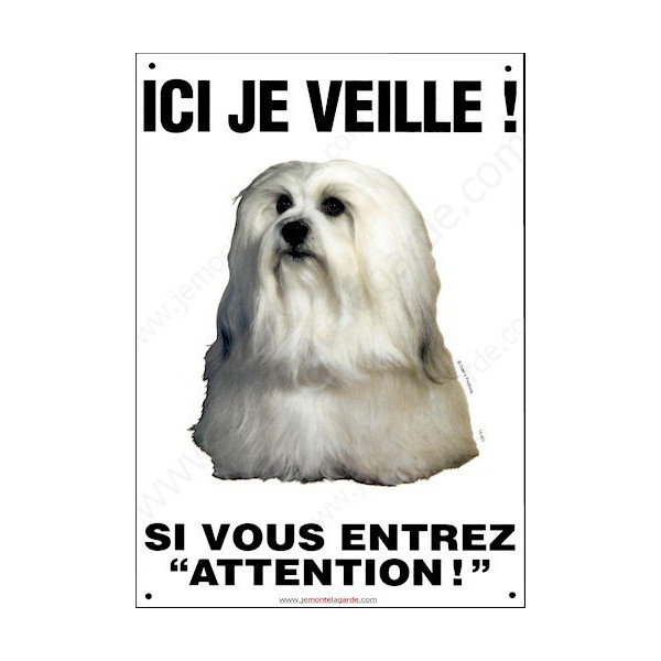 Bichon Havanais, Pancarte Portail Verticale, attention au chien, panneau plaque affiche risques et périls